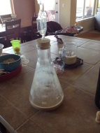 Yeast starter.